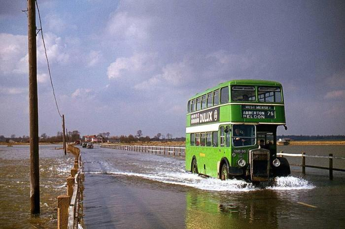 Bus on the strood